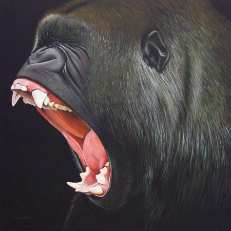 gorille2